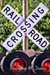 Railroaded railway crossing photo 3