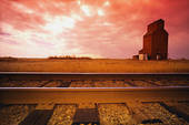 Railroaded grain elevator photo 4
